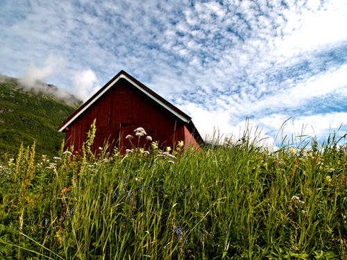 Summer in northern Norway - Photo of boatshed in a meadow