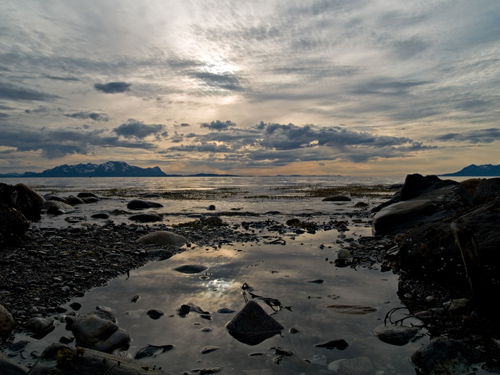Photo from a warm day on the coast in northern Norway