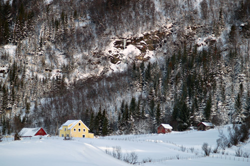 Photo of Norwegian winter landscape in January