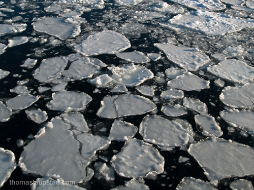 Picture from the Oslofjord, Norway covered with broken ice
