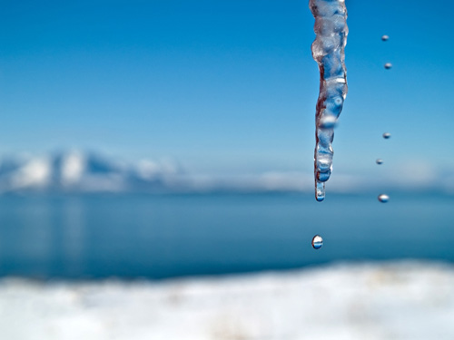 Picture of water dropping from icicles - Sunny day in Northern Norway