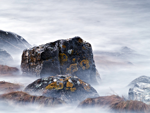 Picture of lichen covered rocks at high tide