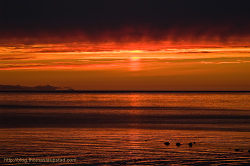 Photo of a red sunset on the coast in northern Norway