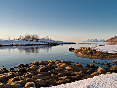 Photo from a winter day at the Norwegian coast filled with sun and snow